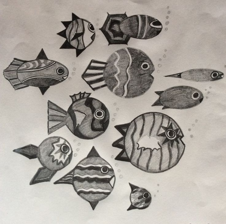 Fish Patterns, pencil.