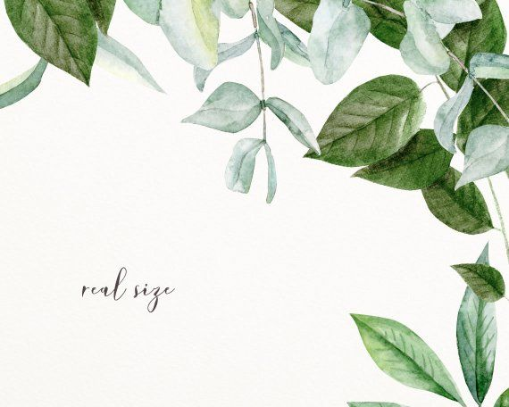 Watercolor Frame Clip Art Greenery Foliage Bundle Png Etsy Frame Clipart Clip Art Selling Artwork