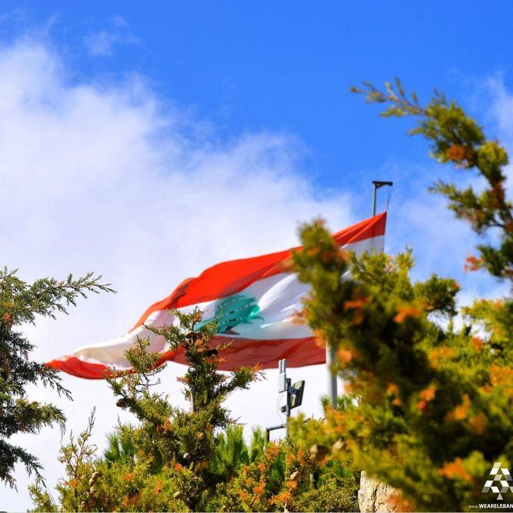 #Lebanon's flag is what matters the most, Good Morning  By @eliasouba #WeAreLebanon  #Lebanon #WeAreLebanon