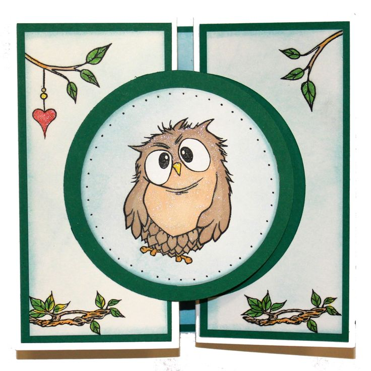 This Gorgeous card was made by Jenny Mayes using Hobby Arts stamp set Owls