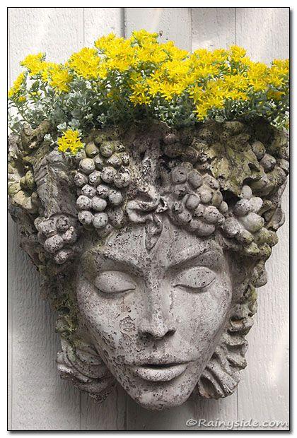 Facsinating stone face ... adorned in Yellow Sedum! from Debbie Teashon's garden.