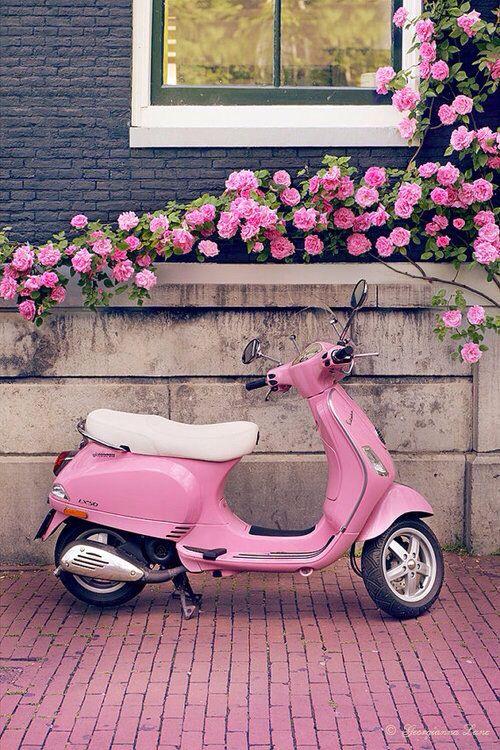 A kis pink.