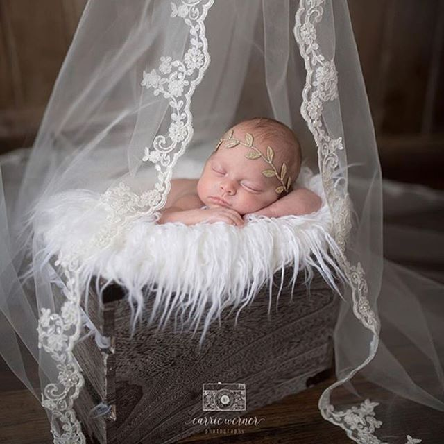 Inspiration For New Born Baby Photography : Instagram photo by Cristy Mishkula • Apr 10, 2016 at 12:44am UTC