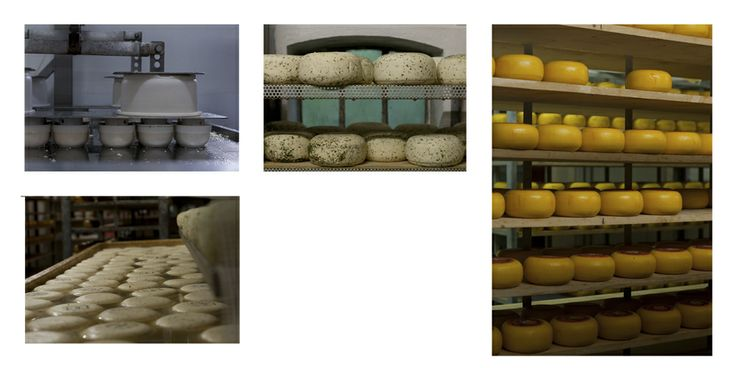 """Boerenkaas, het blijft een lekkernij en een mooi proces om te bekijken. Dank aan kaasboerderij """"De Stelper"""""""