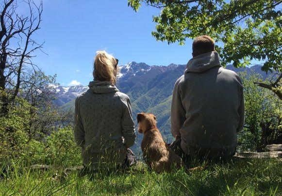 Wart ihr schon einmal mit eurem Hund auf Reisen? Hier könnt ihr nachlesen, welche Erfahrungen wir mit unserem Vierbeiner im Urlaub gemacht haben. Dieses Mal beim Reisen in die Schweiz. Wir möchten euch gern einen Überblick zu folgenden Punkten geben: Einreise und Ausreise mit Hund Vor Ort mit Hund – eigene Erfahrungen Unterkunft/Art der Unterkunft Reisezeit Highlights Urlaub in der …