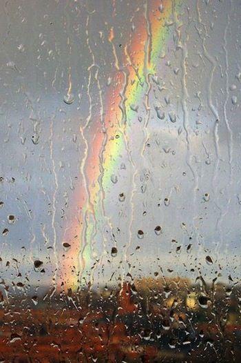 A pesar de la lluvia, por Laura Ferrero en Los nombres de las cosas / FronteraD