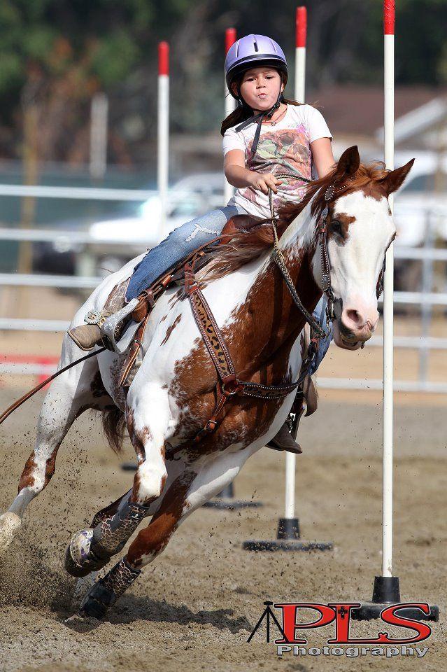 23 Best Pole Bending Images On Pinterest Horses Pole
