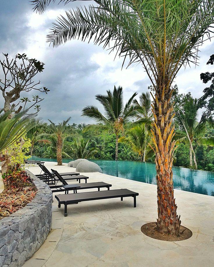 Tropical landscape around the pool at Padma Resort Ubud. #MilesHumphreysArchitect