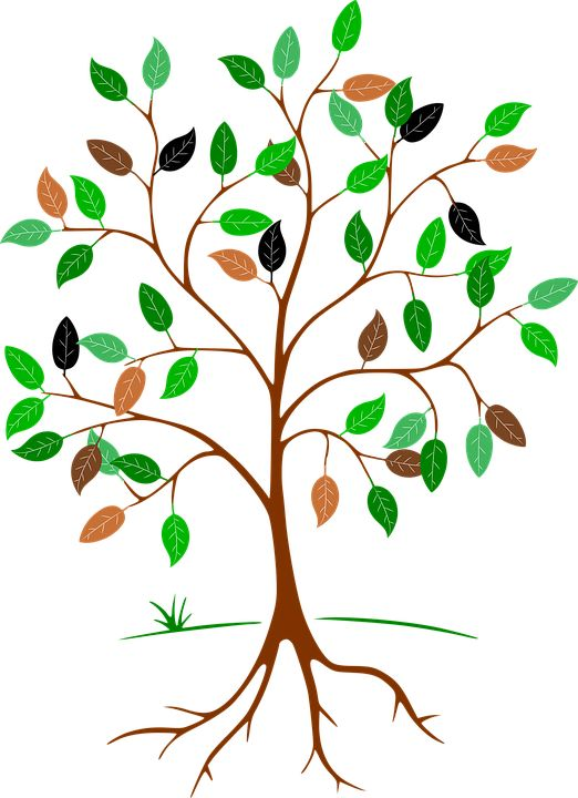 Image result for outlines of leaves and flowers