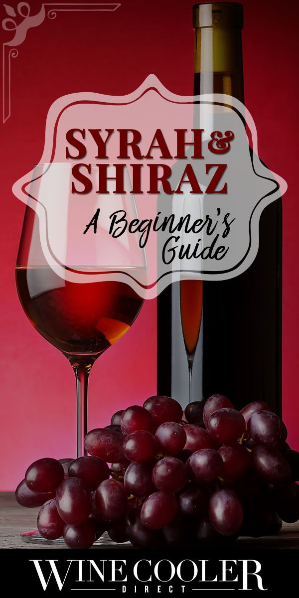 Beginner's Guide to Syrah⁄Shiraz: This wonderful wine will make an impression on your palette that you'll be sure to remember. #wine #wineguide