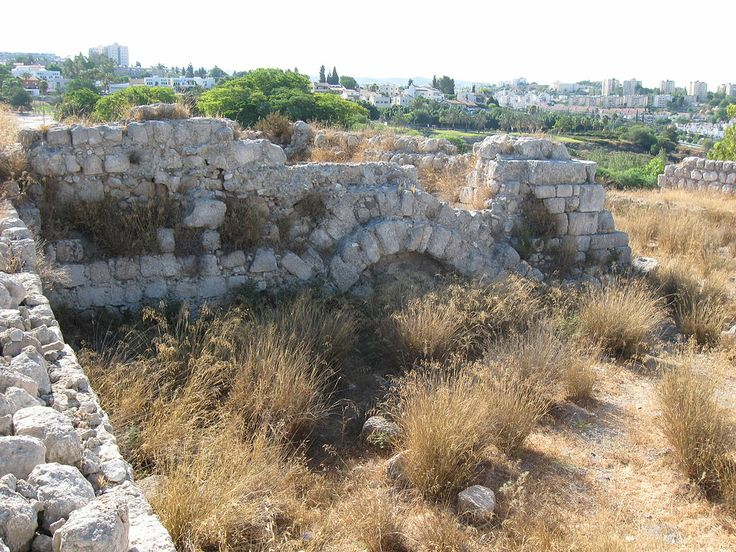 Field Of Joshua Of Beth Shemesh: Tel Beit Shemesh: The Cart Came Into The Field Of Joshua