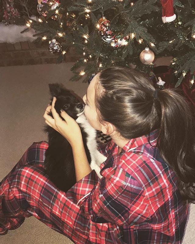365 days till christmas