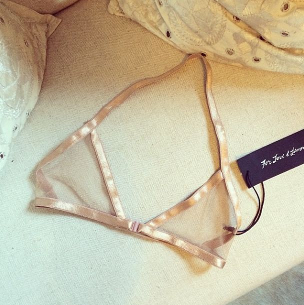 Sheer Lingerie in softest blush (instagram: the_lane)
