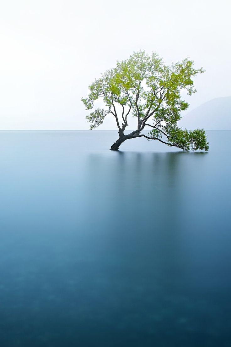 New Zealand, Lake Wanaka