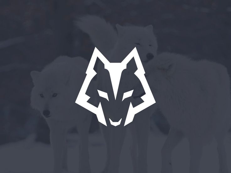 Wolf head inspired Logo