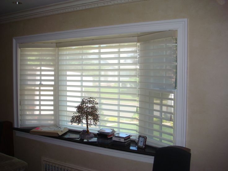 Hunter Douglas Silhouette In Toujours Fabric And