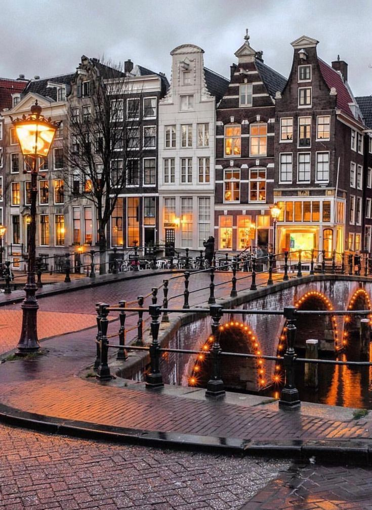 Winter in Amsterdam is usually a very fascinating expertise. Assume frozen canals an…