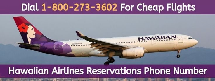 Hawaiian Airlines Reservations Phone Number: 1-800-273 ...