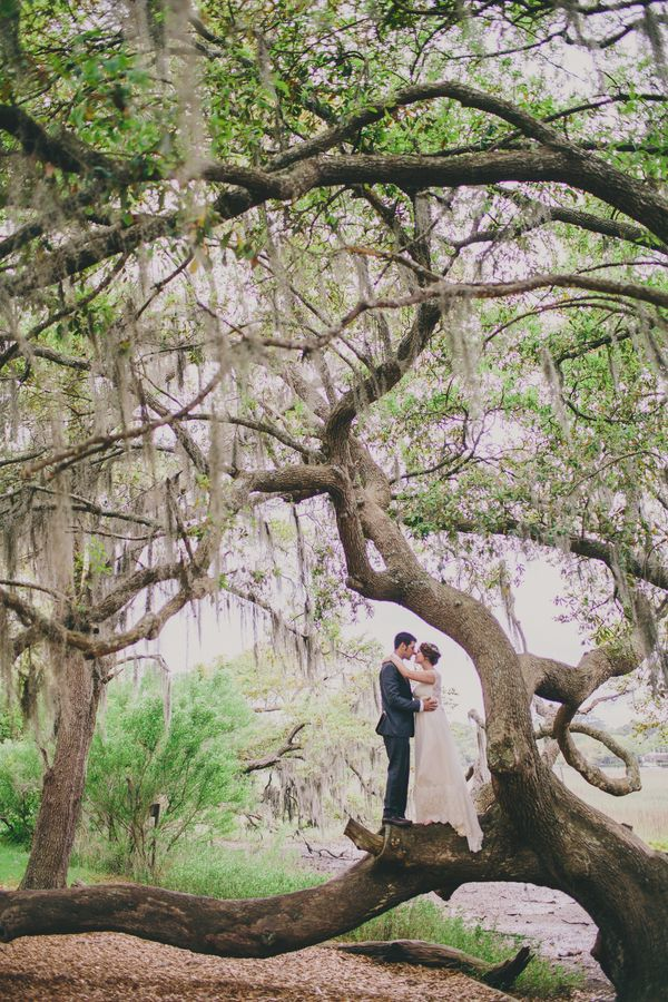 Vintage Blue & Yellow Charleston wedding at Boone Hall Plantation by Pure Luxe Bride, Hyer Images and Branch Design Studio