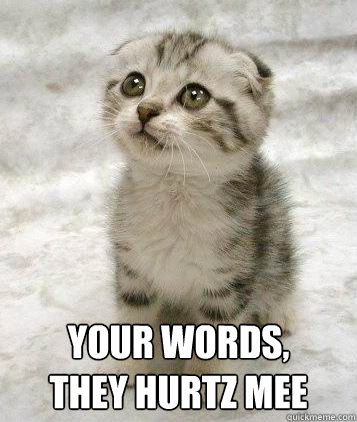 Your words, they Hurtz mee Sad cat   Kicks and Giggles ...
