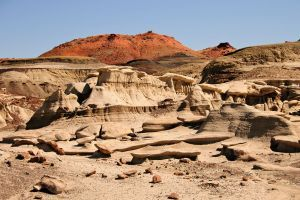 A gallery of photos from the Bisti Badlands in the Bisti/De-Na-Zin Wilderness Area near Farmington, New Mexico.Bisti De Na Zin Wilderness, Wilderness Area,  Drop-Off, Photos Gallery, Favorite Places, Vacations Spots, Mexico Adventure, Bisti Badlands, New Mexico