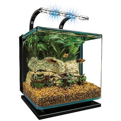 1000 ideas about aquariums for sale on pinterest for 1000 gallon fish tank for sale