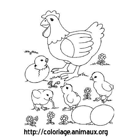 Coloriage poule avec ses poussins classems - Poule a imprimer ...