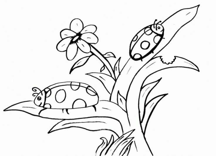 50 best Coloring Pages images on Pinterest Coloring sheets