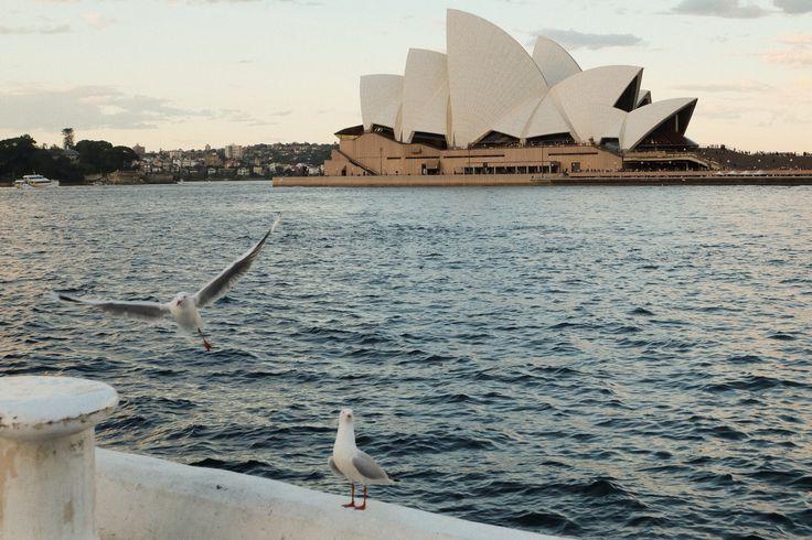 : Sydney Opera House, AUS Sydney trip 2016