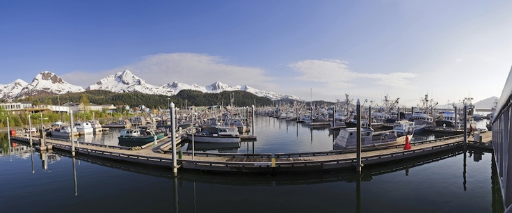 The Last Wild West is Alaska.  fishing for wild salmon