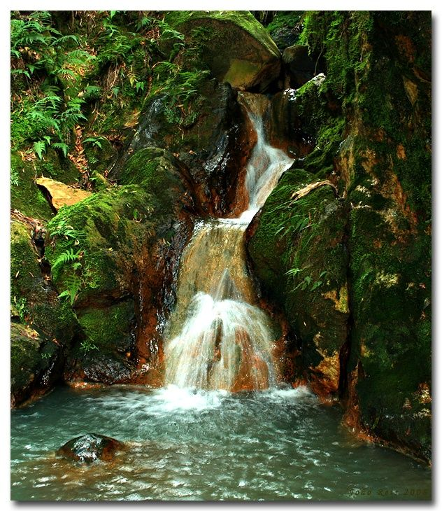 Want to swim in natural hot water ? This is the place :) Caldeira Velha, Sao Miguel, Azores The oldest hot springs