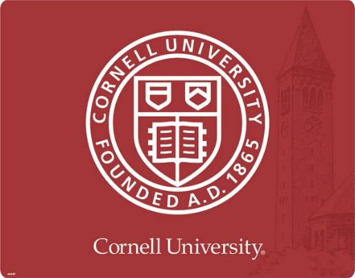 Chances of getting into UT Austin or Cornell?