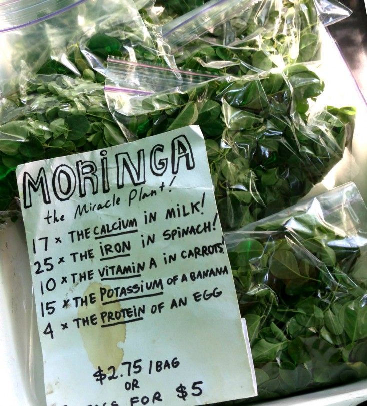 Moringa leaves are indeed chock full of vitamins A, C, and B, as well as being a mineral-rich source of iron and calcium. But wait, there's more. Moringa is unfussy about growing in arid, dry soil.
