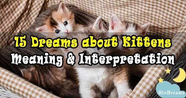Pin On Dream Interpretation