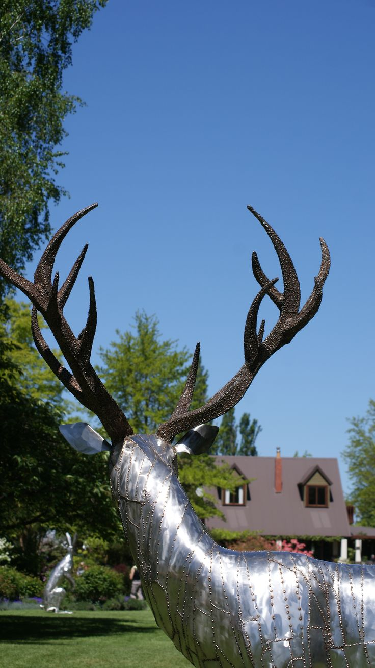 Bill Clarke of Forged and Crafted Stag sculpture , NZ.