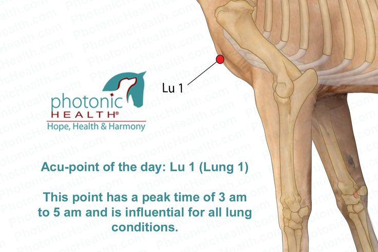 Acu-point: Lu 1 (Lung 1)