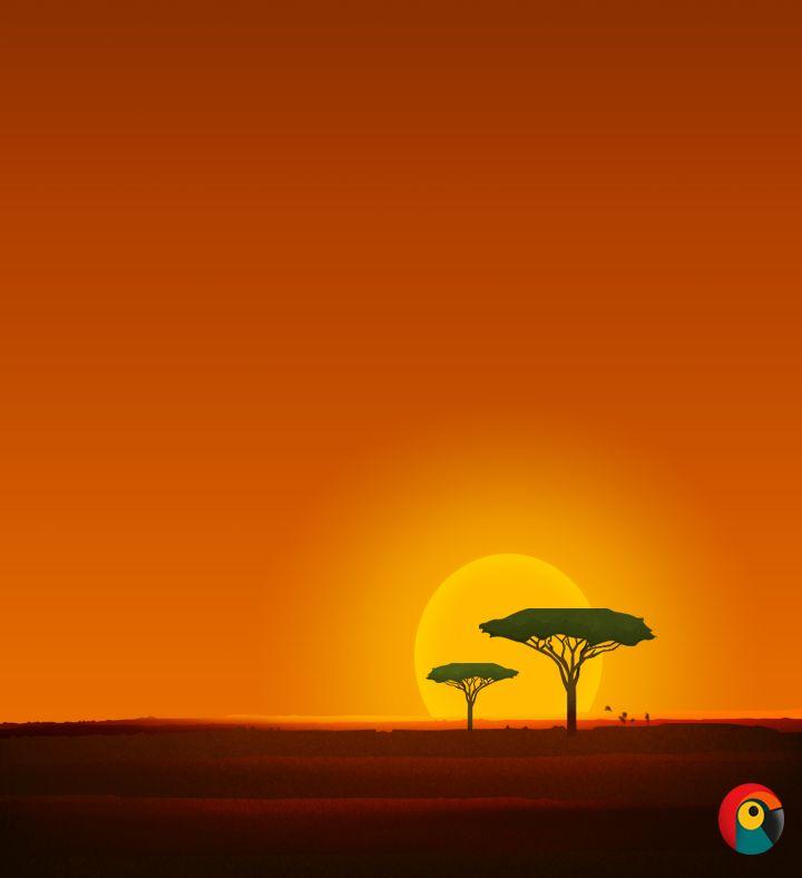 Pixel Parrot http://www.pixelparrot.co.za/ African Sunrise Illustration By Pixel Parrot