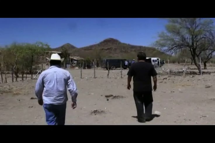 Yaquis,  the story of a popular struggle and a Mexican genocide (II)