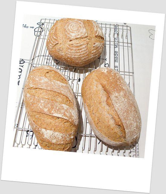 Blog met lekkere (brood) recepten
