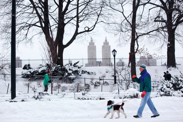 How Everyone but the Weather Channel Botched the NYC Blizzard Forecast