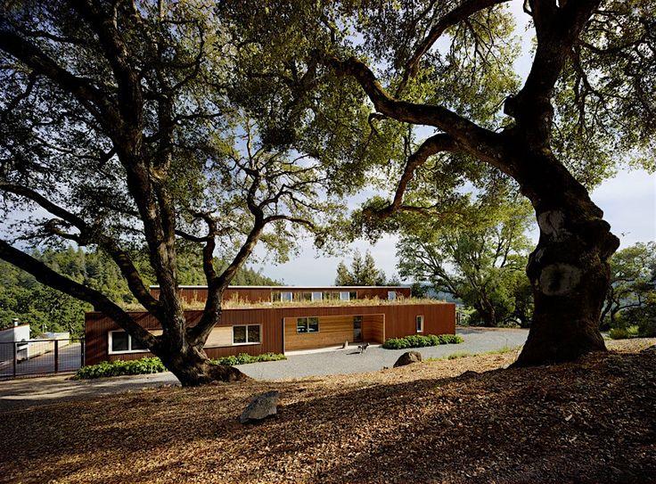 Spectacular Holz f r die H tte u nachhaltiges Design in der Cloverdale Residence KlonBlog