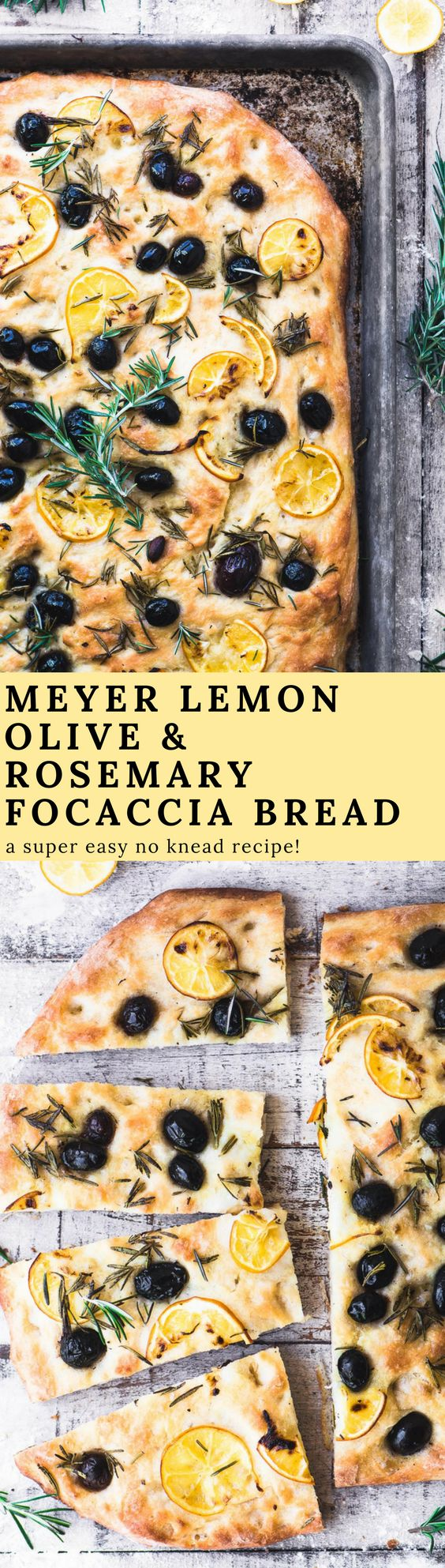 Rosemary and Olive No Knead Focaccia Bread with paper thin slices of Meyer lemon