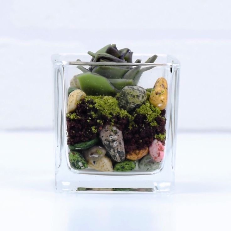 A DIY edible terrarium that will have heads turning! Check it out!
