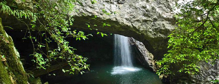 The wonder of Natural Bridge in Springbrook National Park, Gold Coast Hinterland