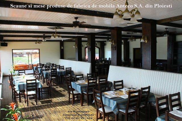 Scaune din lemn masiv pentru restaurant: Scaune si mese din lemn masiv