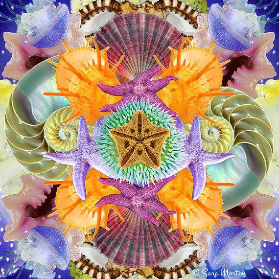 Kaleidoscope Ca: 23 Best Ideas About Original Kaleidoscope Digital Collage