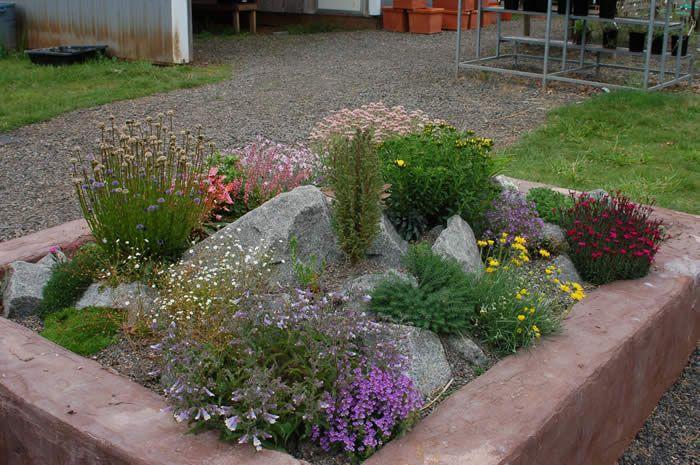 Rock garden examples