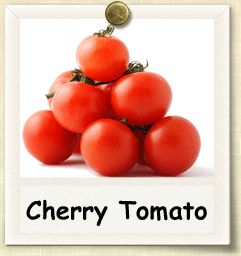 How to Grow Cherry Tomato | Guide to Growing Cherry Tomatoes