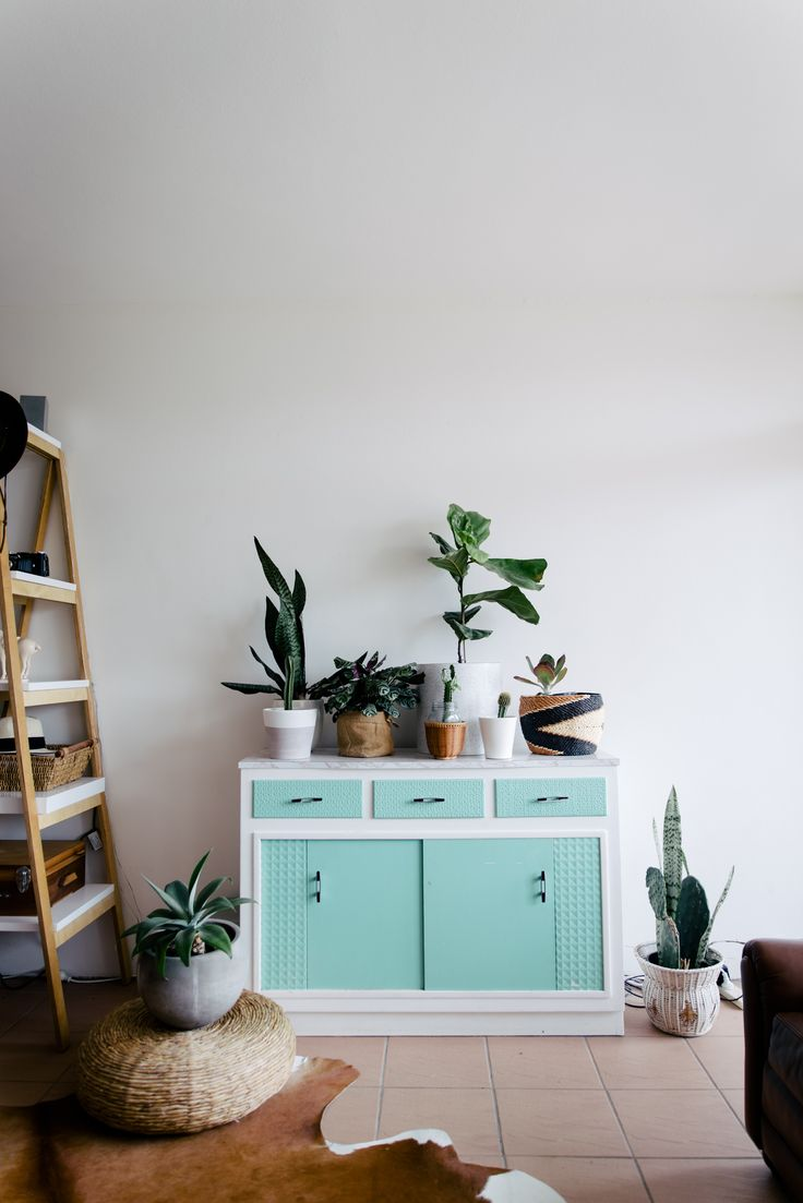 Mint planter / @tessguinery