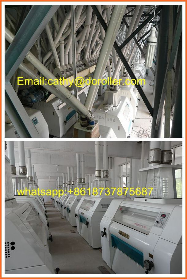100 ton wheat flour mill line for sale